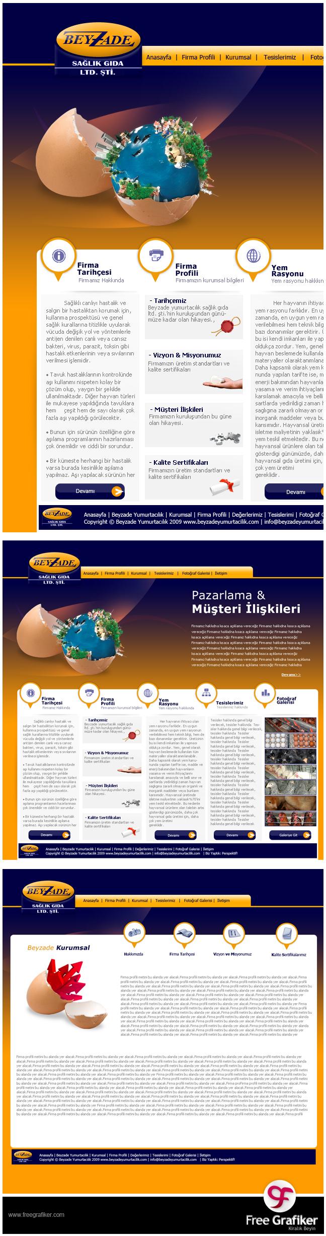 Beyzade Yumurtacılık web sitesi tasarım