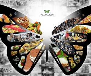 Pedaliza Catering Web Tasarım