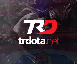 Trdota.net Logo Tasarım