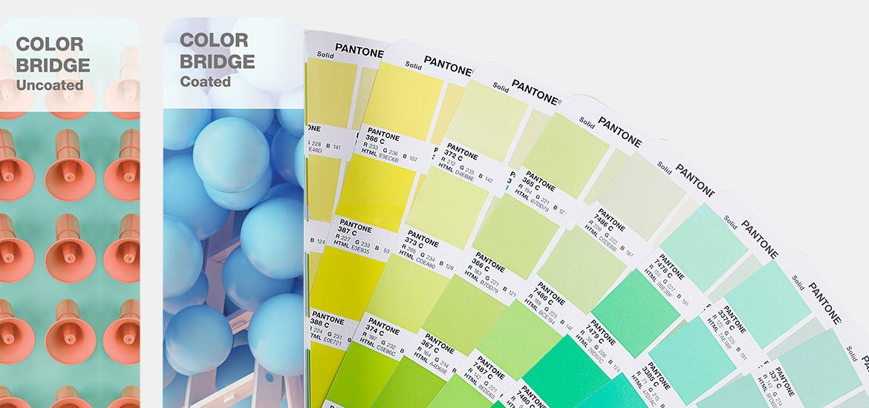 Pantone Color Bridge CMYK Renk Kataloğu